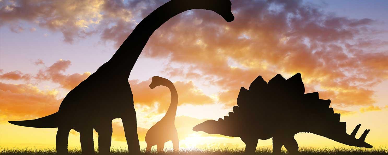 全国の恐竜イベント一覧 ウォー...